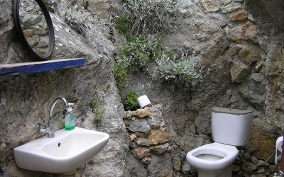 6 Common Signs That You May Need to Repair Your Toilet